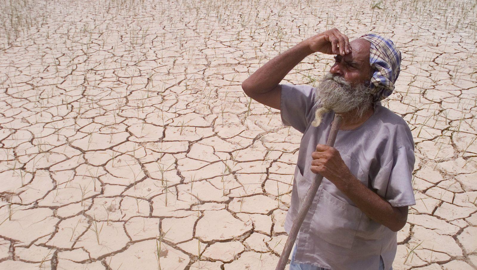 తెలుగు రాష్ట్రాల్లో కానరాని చినుకుజాడ